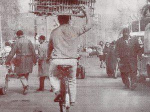 cairo_cyclist