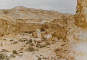 cairo_wadi